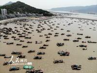 2021年4月29日,渔船停在连云港市连岛渔港准备休渔。