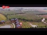 """习近平河南行丨""""生活富起来""""——走进邹庄丹江绿色果蔬园基地"""