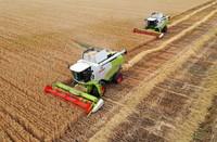 5月27日,在寶豐縣龍王溝鄉村振興示范區的一處麥田里,農機手駕駛收割機收割小麥(無人機照片)。新華社記者 李嘉南 攝