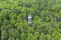 6月2日拍攝的伊春市上甘嶺溪水國家森林公園景色(無人機照片)。