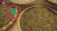 红色财经·信物百年 这枚小小的茶叶商标,突破贸易封锁!见证了中国进出口贸易发展的历程!