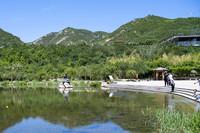 市民在位于太原市西山地區的玉泉山城郊森林公園游玩(6月3日攝)。新華社記者 楊晨光 攝