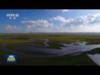 奋斗百年路启航新征程·沿着高速看中国