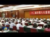 十三届全国人大常委会第二十九次会议举行联组会议