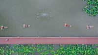 6月14日,在浙江省湖州市德清縣下渚湖國家濕地公園,游客劃船欣賞盛開的荷花(無人機照片)。新華社發(謝尚國 攝)
