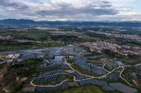 7月6日,從空中俯瞰位于東陽市六石街道夏溪潭村附近的50兆瓦農光互補光伏發電項目(無人機照片)。