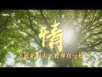 时政微视频《情·习近平和人民教师在一起》