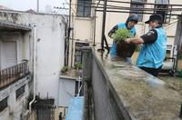 9月13日,上海市黄浦区外滩街道山北居委会工作人员将绿植搬入平台内。
