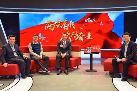 贾康、王守清、张燎三位专家做客人民网 共谈2017年固定资产投资如何走