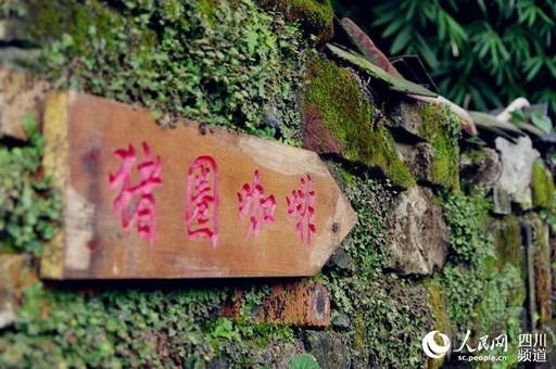 第五届村政论坛嘉宾走进都江堰市参观考察