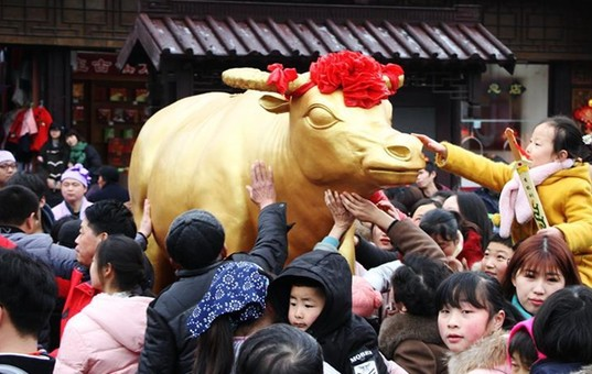 """年初一游客在苏州周庄""""打春牛"""""""