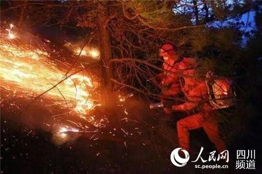"""四川雅江县""""2·19""""森林火灾已扑灭"""