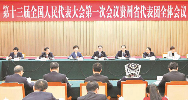 贵州省全国人大代表履职掠影