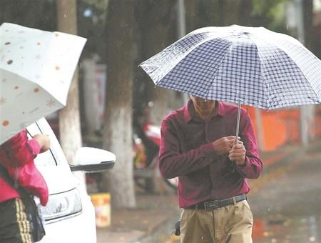 江苏多地风雨袭来 空气凉爽湿润