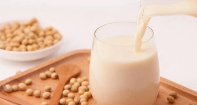 喝豆浆提高受孕概率不靠谱