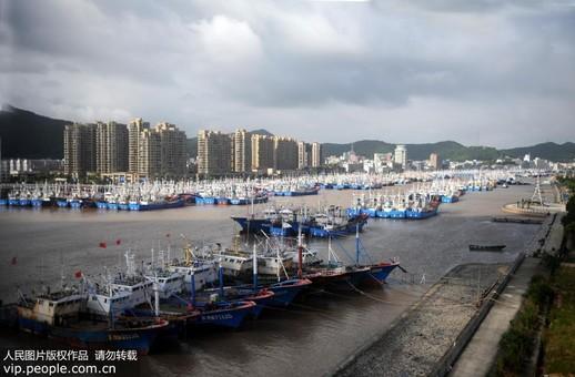 """浙江舟山:千艘渔船归港备战台风""""安比"""""""