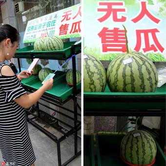 安徽街头无人售瓜:卖出5万多斤 没人不付钱