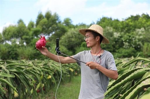 海南新农人:守望与开拓