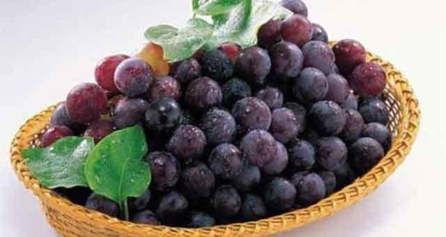 软化血管、滋养肺气……一种葡萄一种药