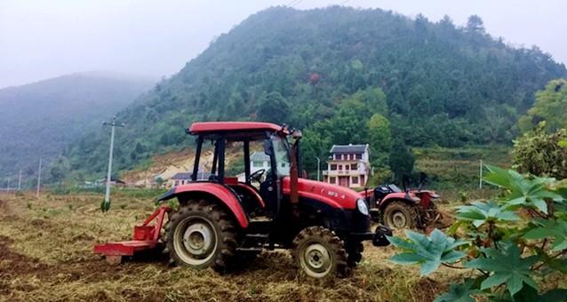 沙坝村:山头再披绿 产业谋发展