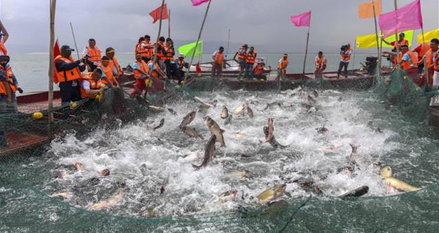中国最大内陆淡水湖迎来开湖季