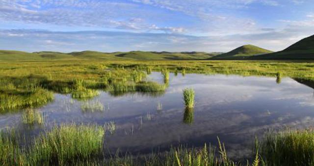 初秋甘肃岷县近百万亩湿地草原水清草绿