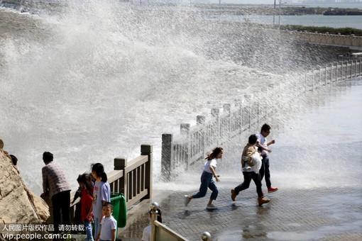 """江苏连云港:台风""""塔巴""""来袭 海滨掀巨浪"""