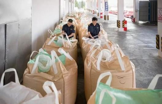 """中国为什么要对""""洋垃圾""""说不?"""