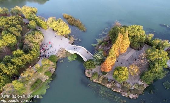 安徽巢湖:生態公園美如畫