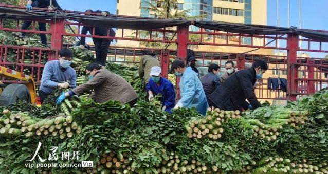 四川省百余吨爱心蔬菜水果到武汉