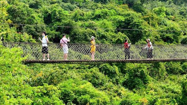 """游客在热带天堂森林旅游区""""森""""呼吸"""