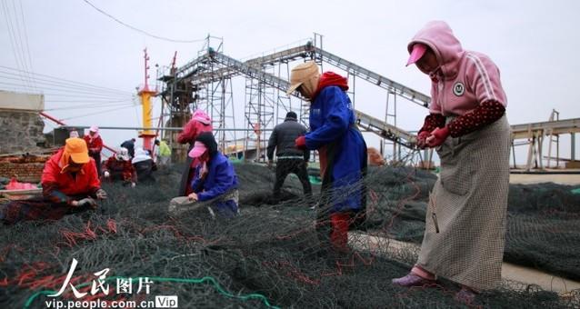 浙江玉环:沿海渔民春汛补网忙