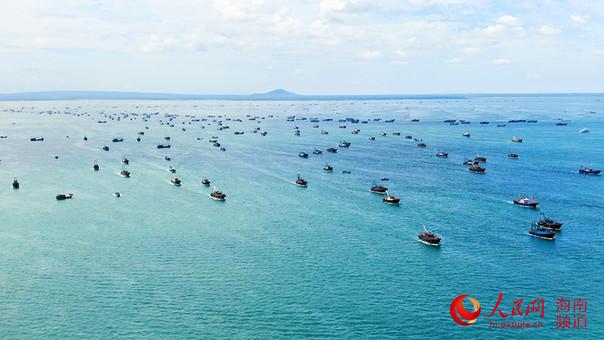 南海开渔!海南临高千帆竞发迎丰收