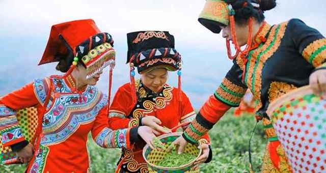 2021年中国农民丰收节贵州主会场活动将在七星关区举行