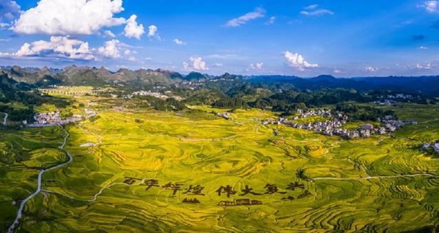 广西南丹巴平村:稻米飘香画小康