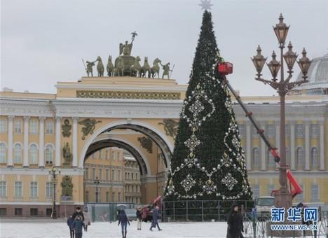 圣彼得堡布置枞树迎接新年
