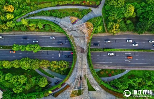 杭州之江路花团锦簇绿意盎然