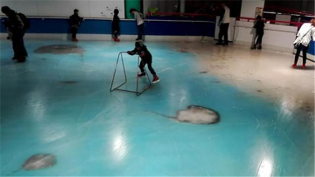 """冰封""""真鱼""""引批评 日本溜冰场被迫关门"""