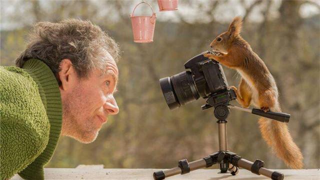 瑞典小松鼠拿起相机拍摄影师