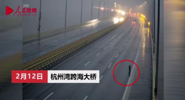 """巨型轮胎""""离车出走"""" 跨海大桥上狂飙一千米"""